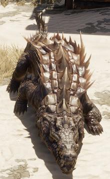 Saltwater croc