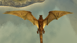 Divinity 2 dragon form
