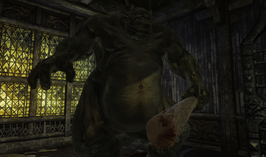 Najaad as a troll (D2 FoV character)