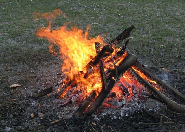 File:Campfire 4213.jpg