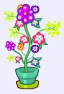 Garden potted whimsey plant
