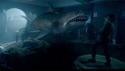 Requin Xmascarol