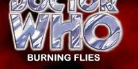 IA19 - Burning Flies
