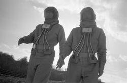 Alien Ambassadors