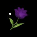 Dark Rose Petals