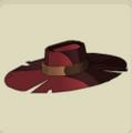 Lonne's Hat