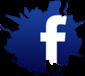 File:Fbook widget.png