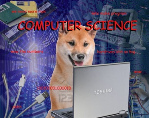 File:Dogebeginner.jpg