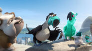 MINT with Luiz, Freeze, Frisby, and an unknown toucan