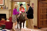 Chloe-on-a-miniature-pony