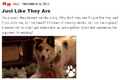 Thumbnail for version as of 05:31, November 6, 2012
