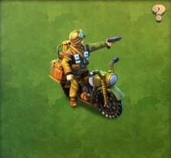 Veteran Motorcycle Raider