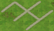 Road Level 6