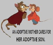 An adoptive mother cares for her adoptive son