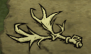 Dropped Stag Antler