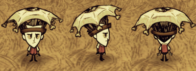 Eyebrella Wilson