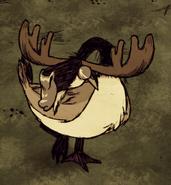 Moose Sleeping