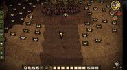 Lureplant Farm
