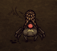 don t starve cave guide