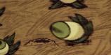 Eyeplant attacking Rabbit Hole.png