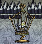 Cagedcanary