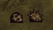 Bee Mines.png