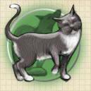 File:Animals (DG2).png