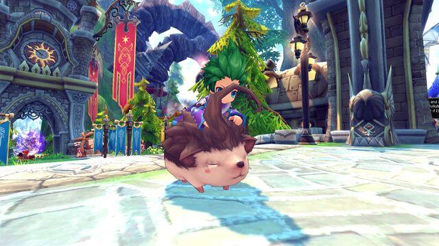 File:Hedgehog1.jpg