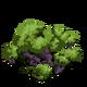 Bitter Bark Tree