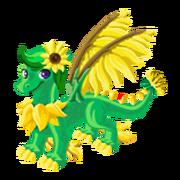 Sunflower Epic