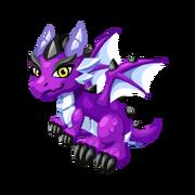 Neo Purple Juvenile