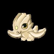 Ivory Baby