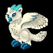 Snow Owl Adult