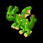 Cactus Adult