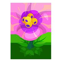 Pollen Petal