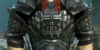 Armor of the Legion