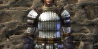 Splintmail armor set