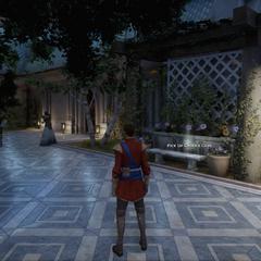 13 - Guest Garden - Lower Level