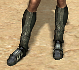 File:The Ancestor's Greaves.png