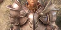 Knight Commander's Plate