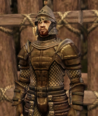 File:Tower guard.png