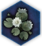 Dawn Lotus icon