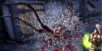 Virulent burst