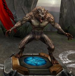 Werewolf (HoDA)