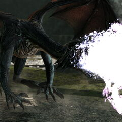 The fire breath of a mature dragon.