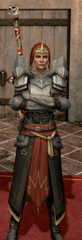 File:MeredithArmor.png