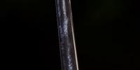 Ornate One-Handed Haft