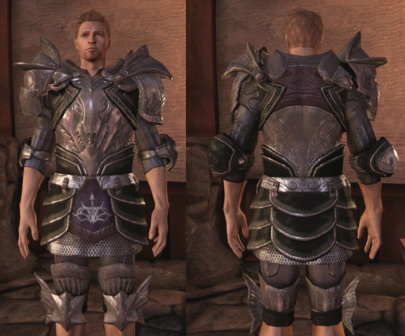 File:Chevalier's Armor.png