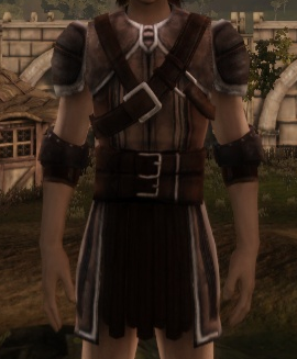 File:Dalish Armor.png
