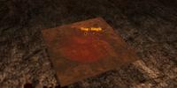 Codex entry: Traps